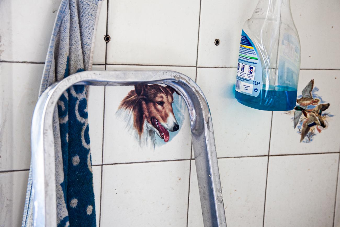 détail d'un mur de la cuisine : plaque de carreau dessin border colie : ensemble de bleus - photo couleur fineart projet photo choses à soi de rêvelise rohart - série ciel sonore.jpg