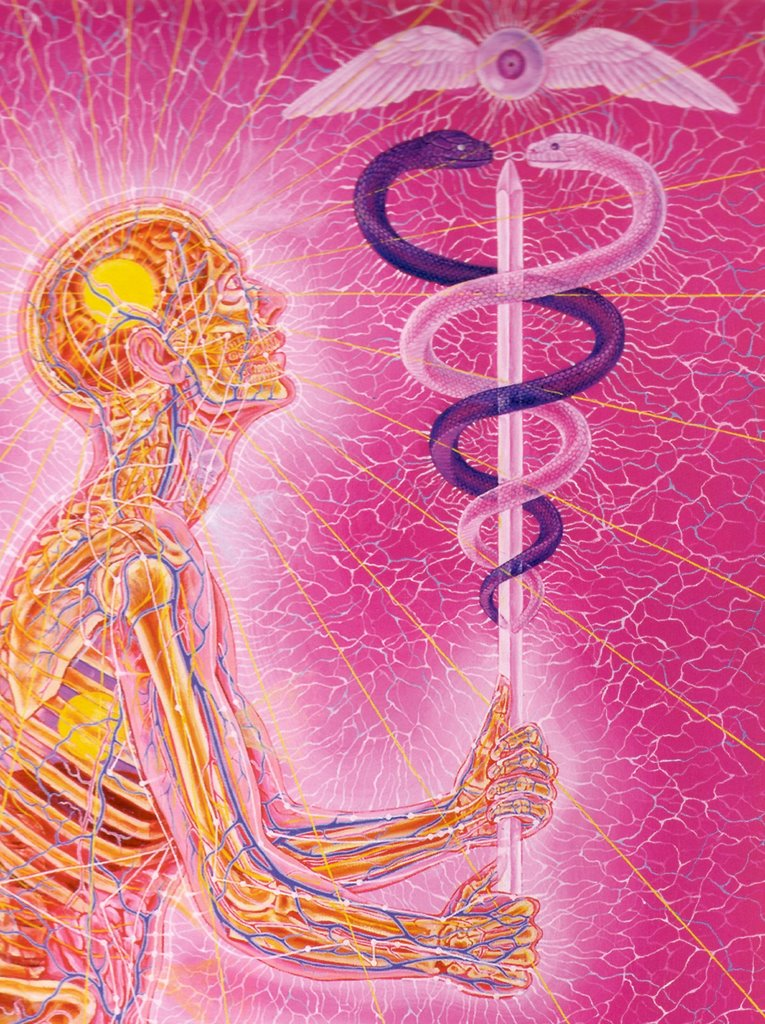 "From ""Journey of the Wounded Healer"" by Alex Grey."