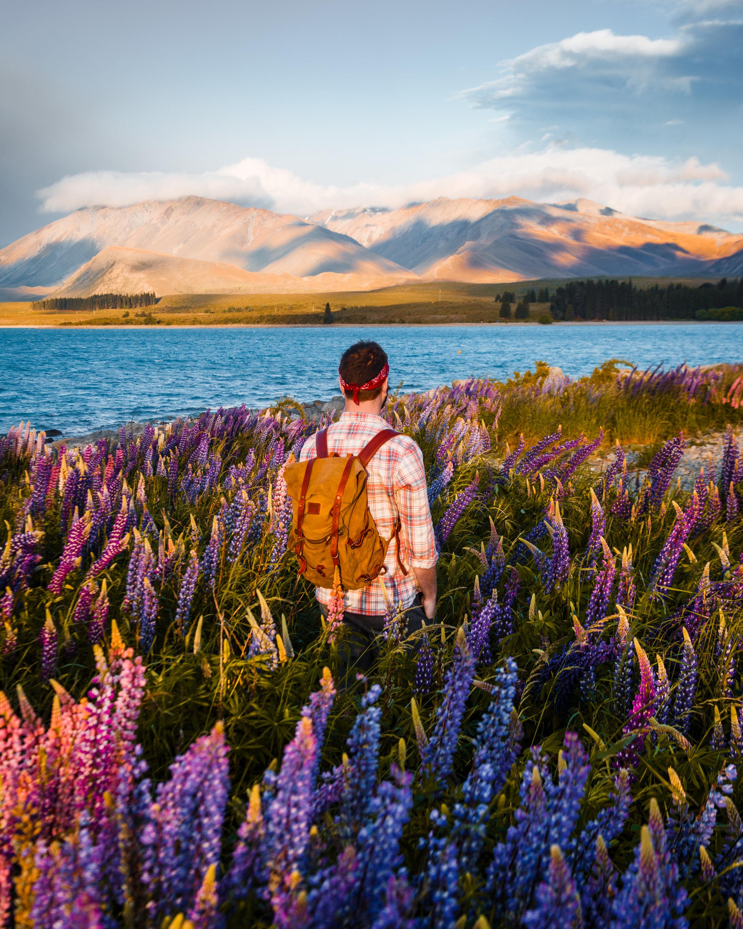 ryan banger NZ 2.jpg