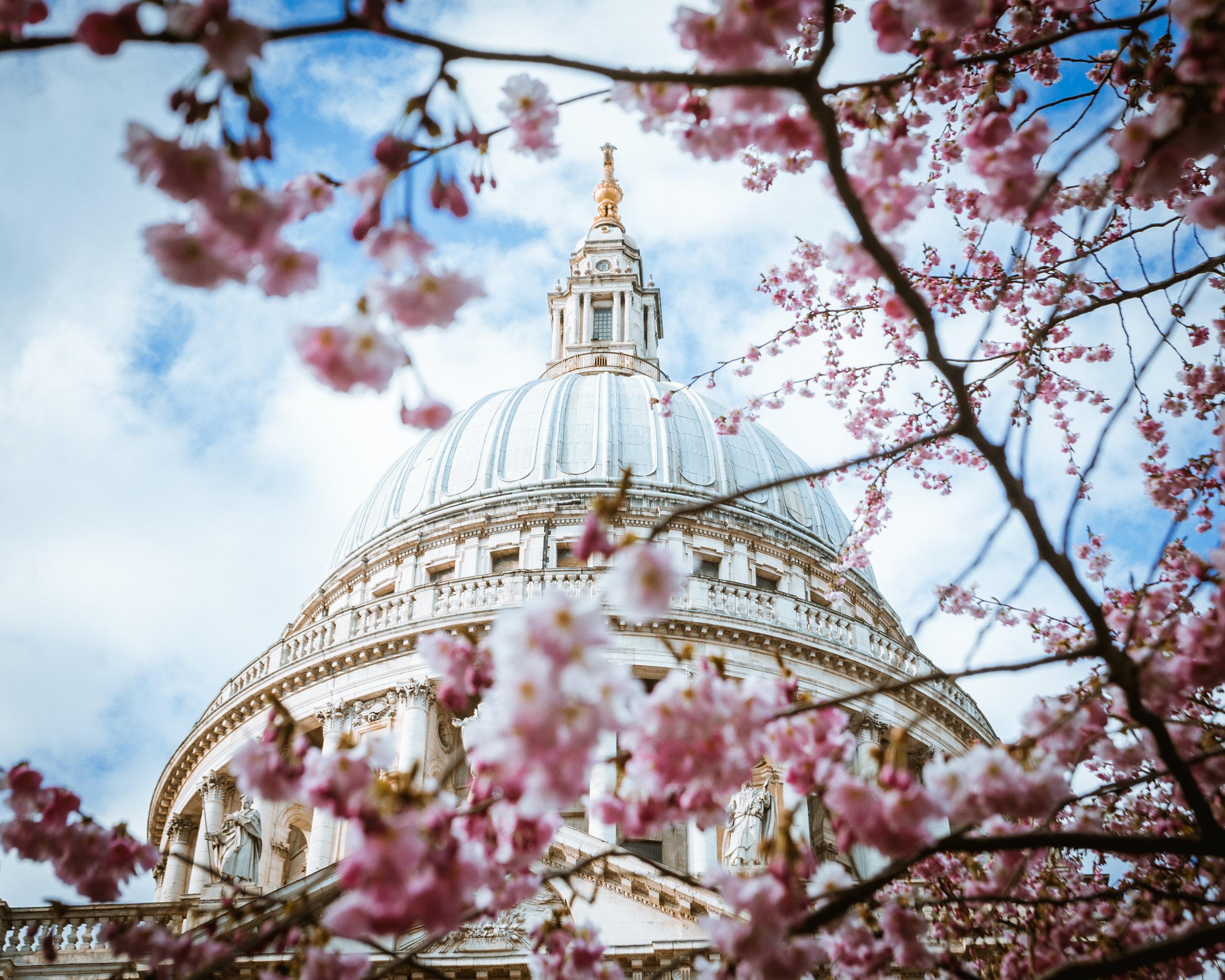 London Photo 14 Horizontal_.jpg
