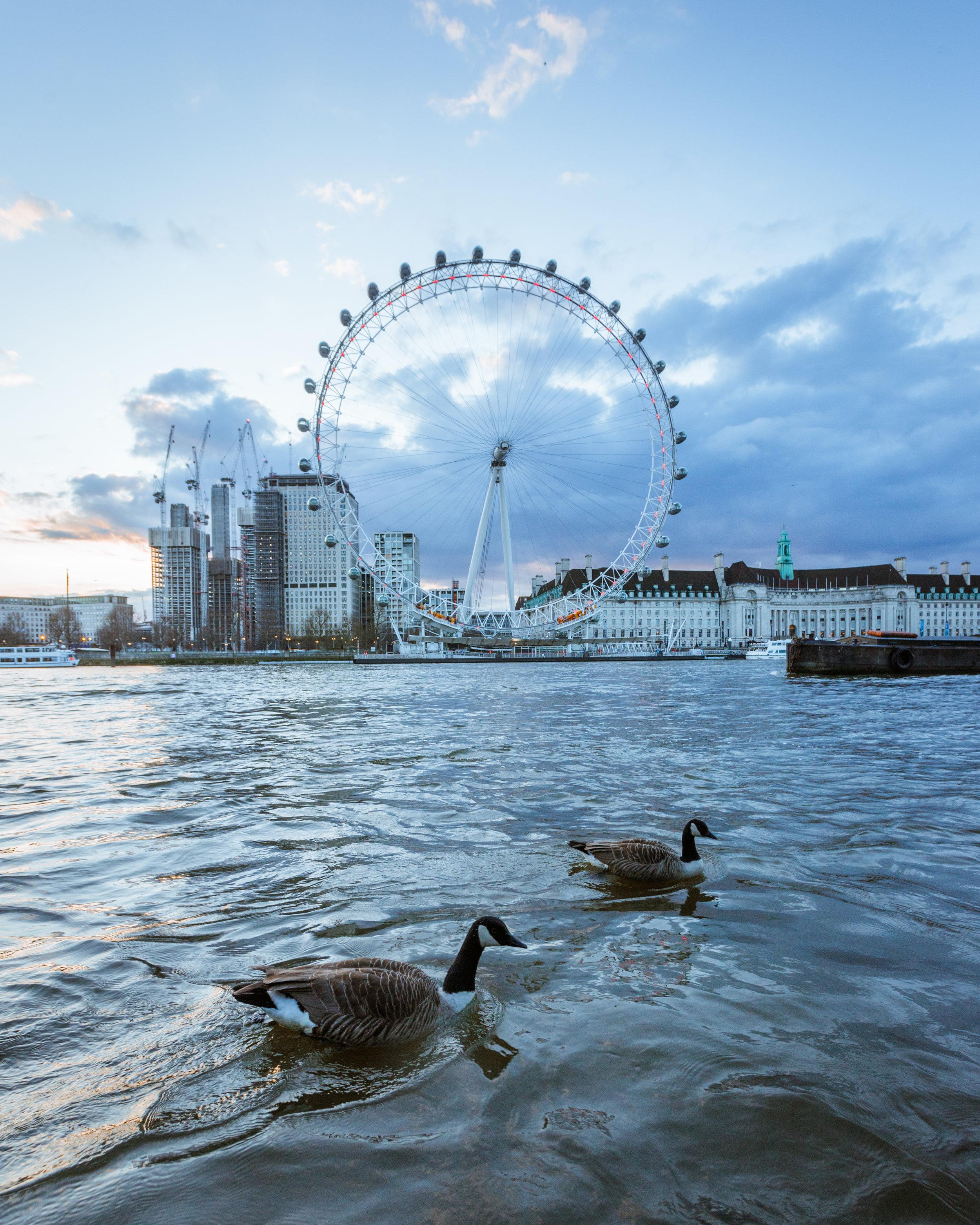 London Photo 23 Vertical.jpg