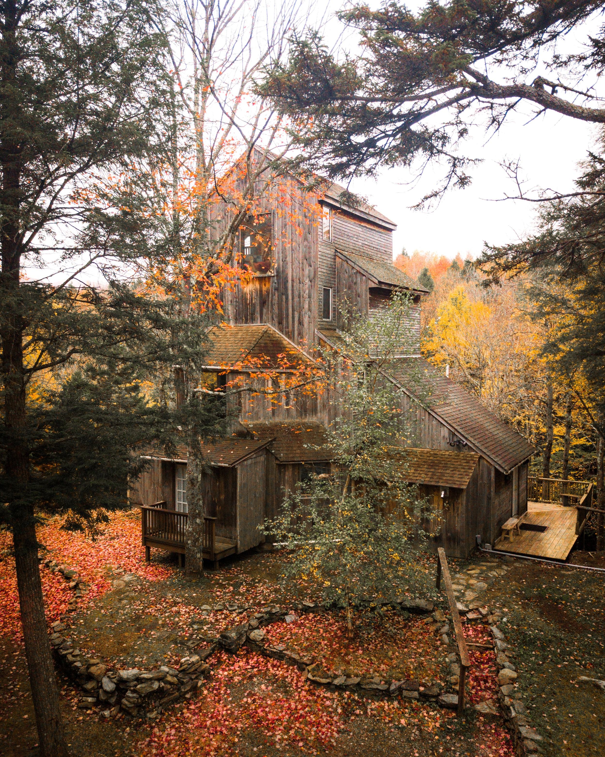Tree+house+1_.jpg