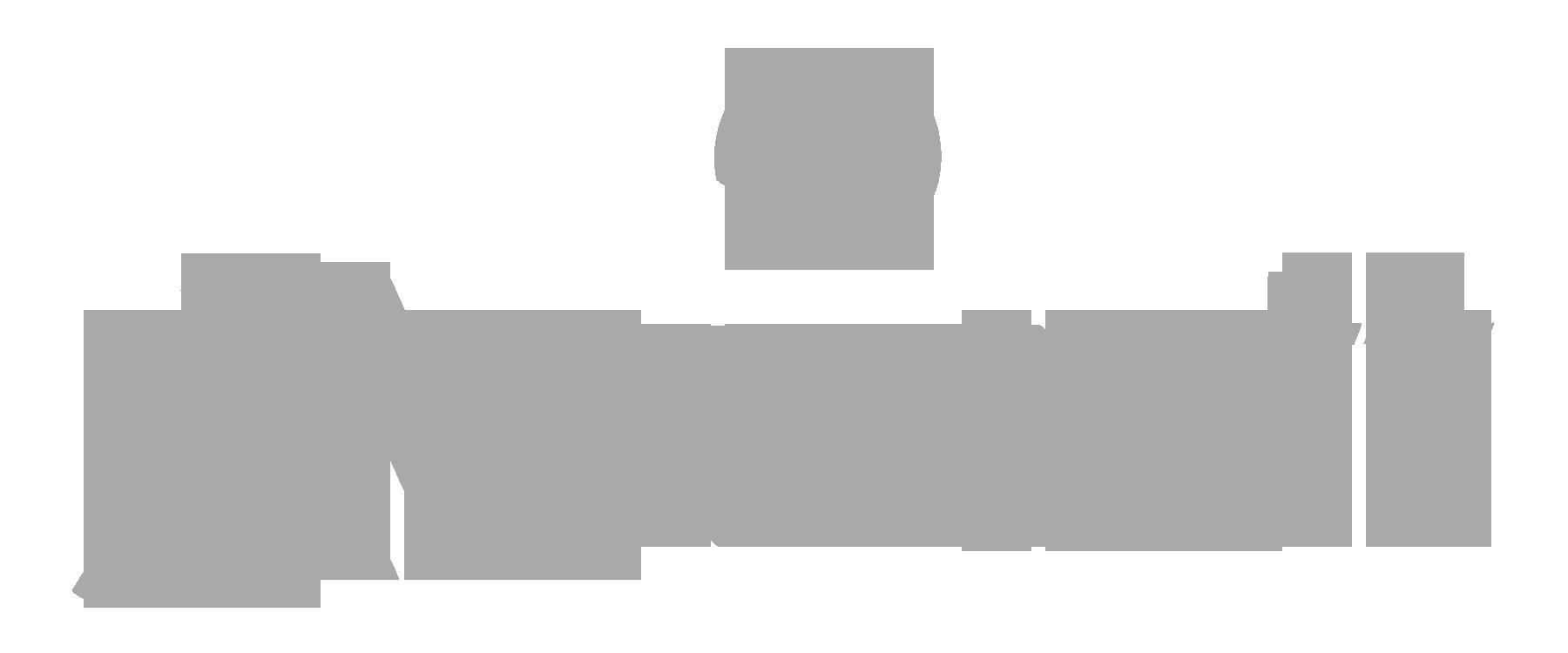marriott grey.png