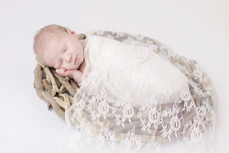 newborn-lace-driftwood.jpg