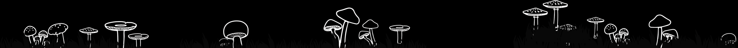 hsssn_mushroom_bottom.png