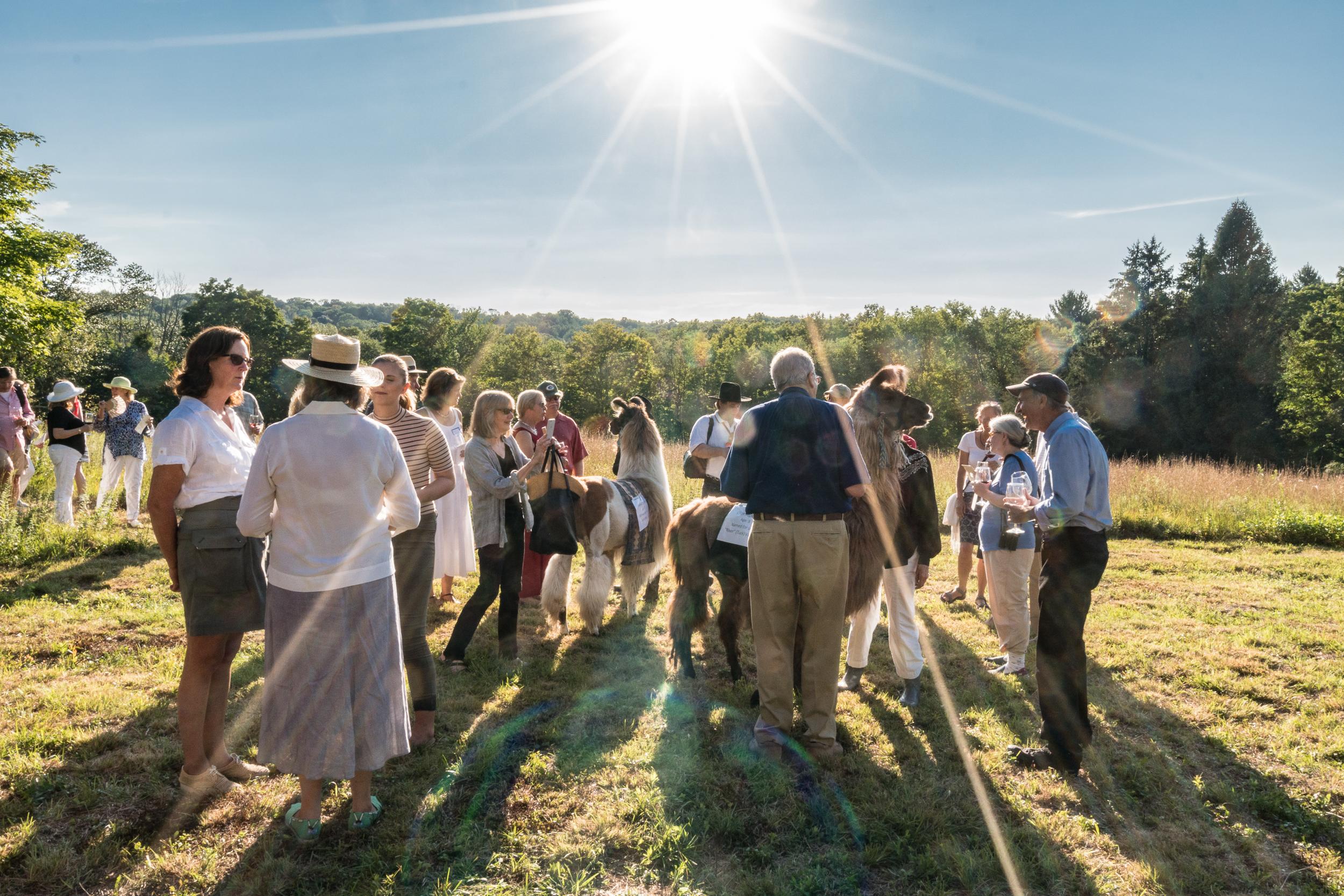 Land Trust Meadow Walk -33.jpg