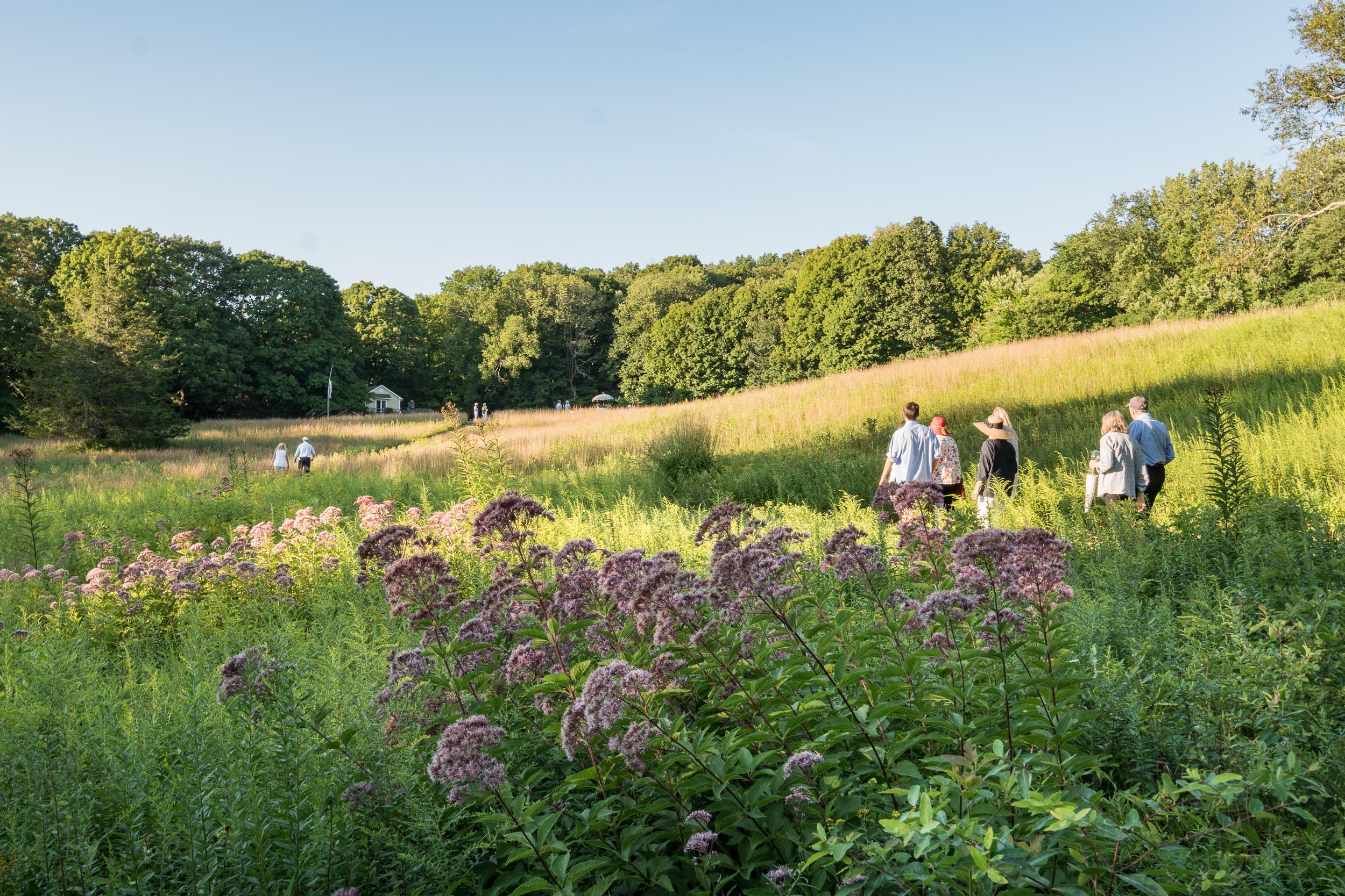 Land Trust Meadow Walk -41.jpg