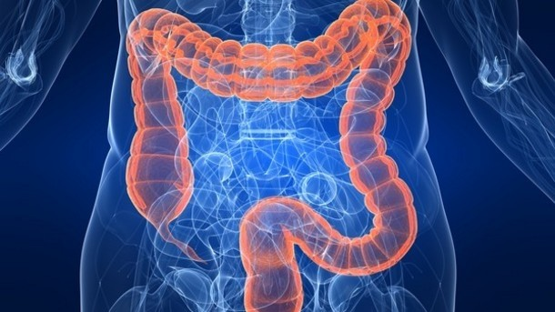 f2a9f-probiotic-potential-altering-gut-bacteria-shows-promise-for-fatty-liver-disease_wrbm_large.jpg
