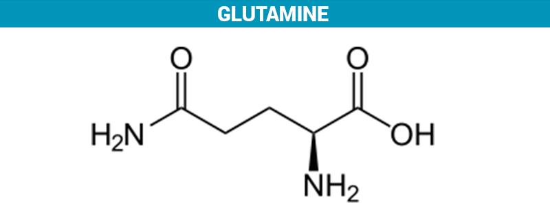 5341b-glutamine.png