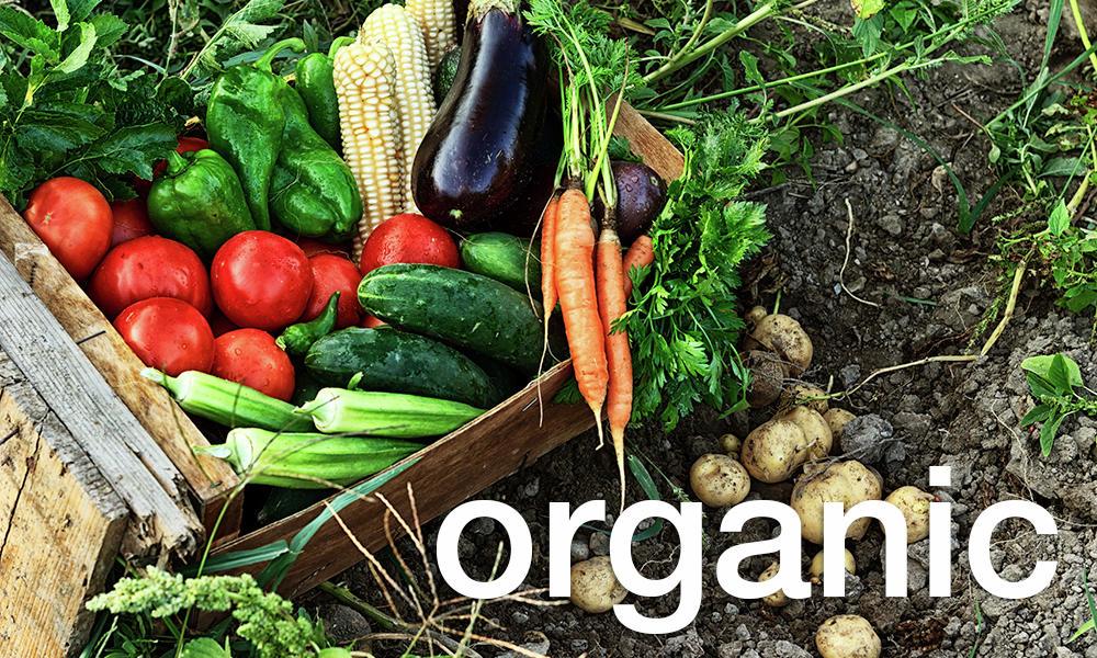 f84a8-organicvalentinrussanovistock_3.jpg