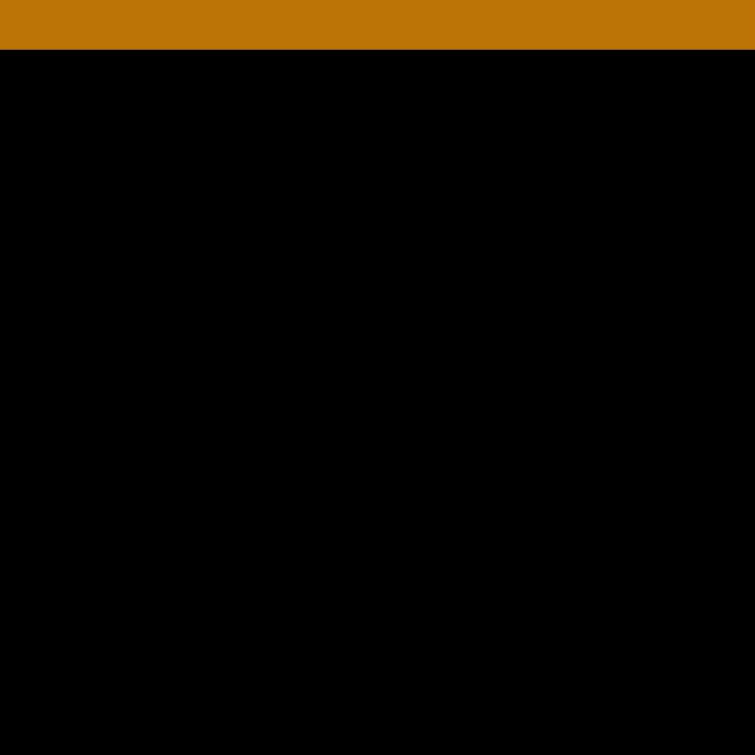 N9STC Web Graphics (31).png