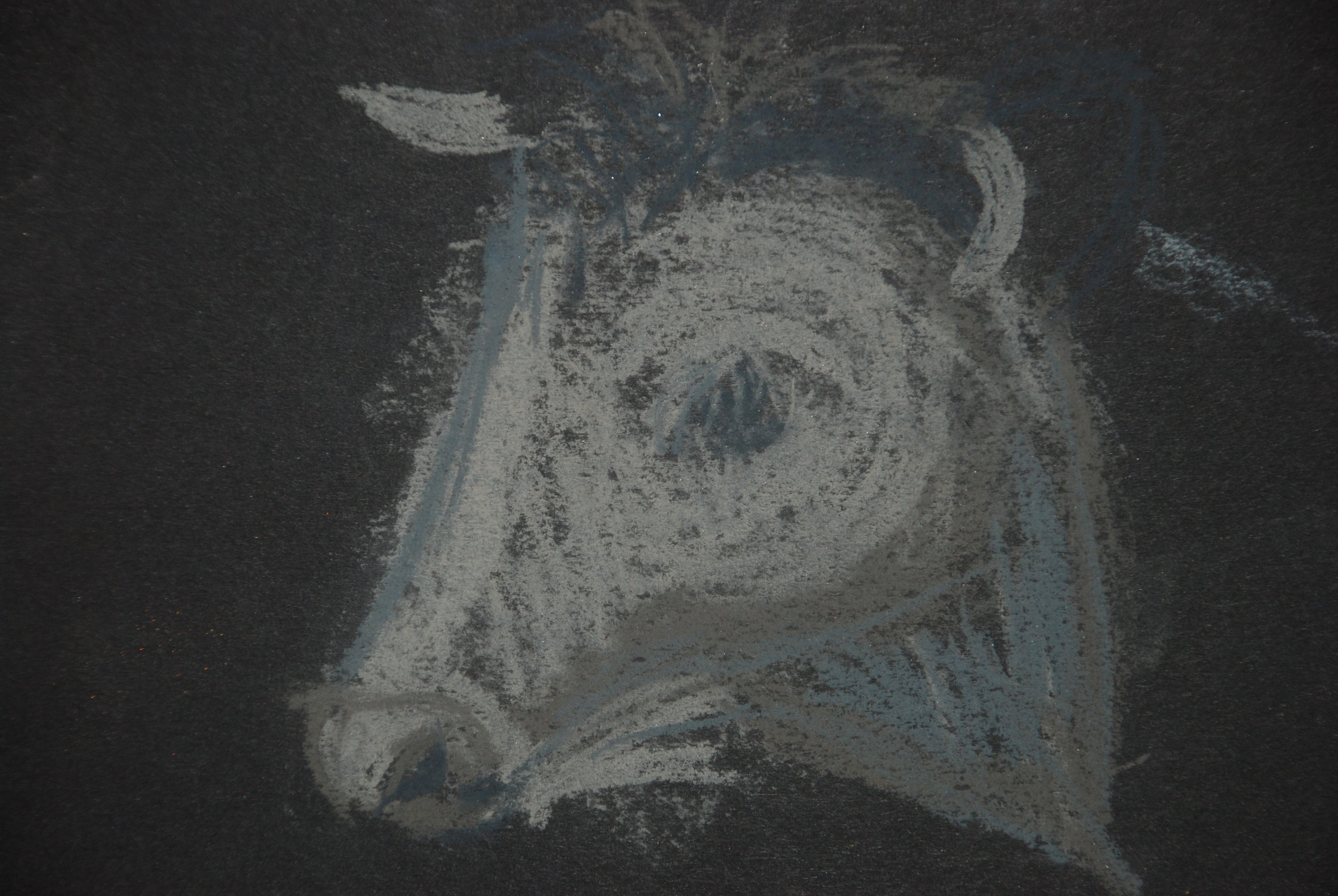 Cow drawing.JPG