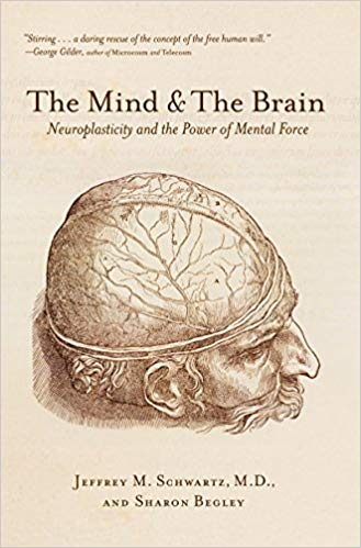 The Body The Mind and the Brain: Neuroplasticity and the Power of Mental Force by by Jeffrey M. Schwartz MD (Author), Sharon Begley (Author)