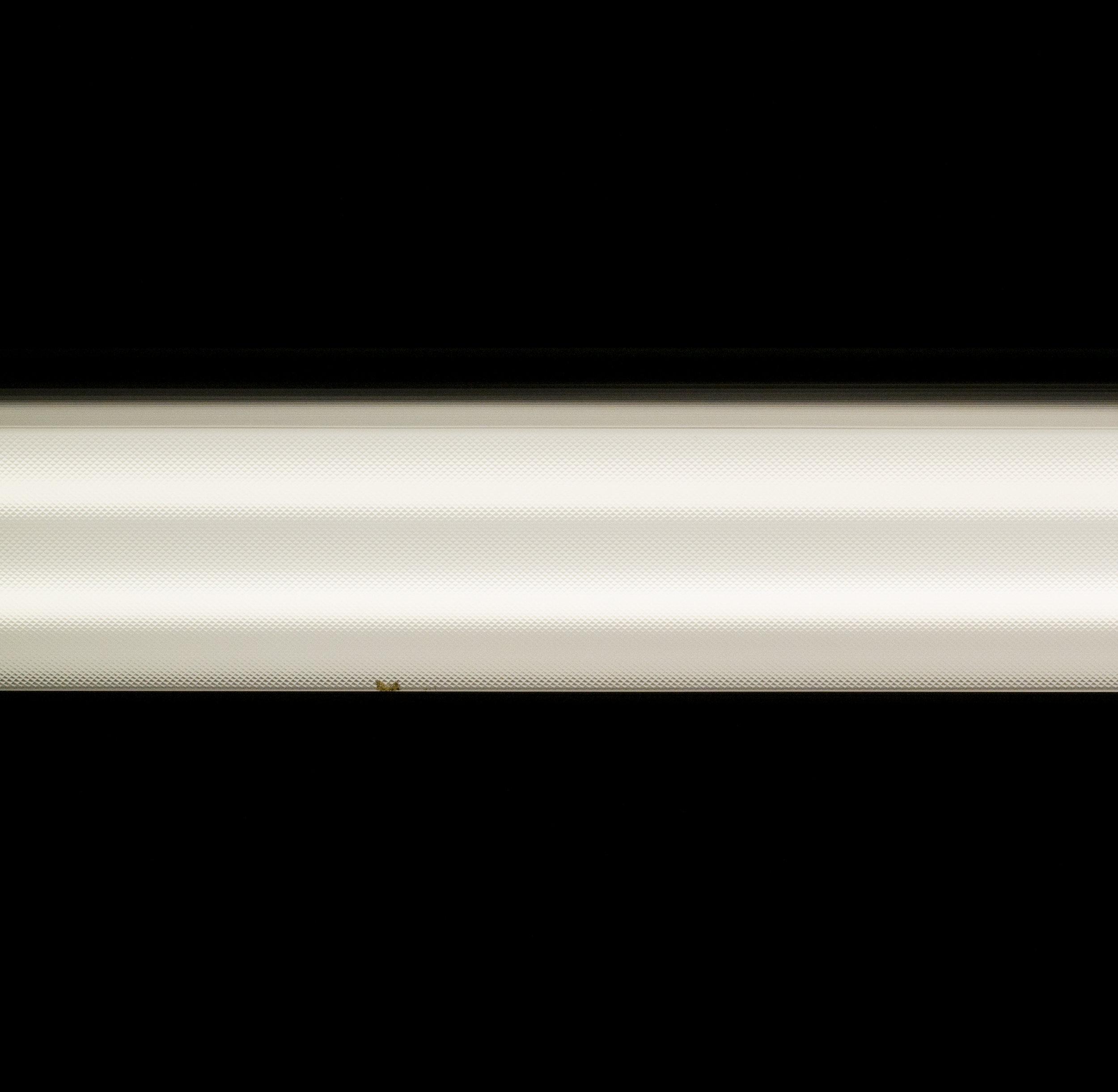 4-Florescent.jpg