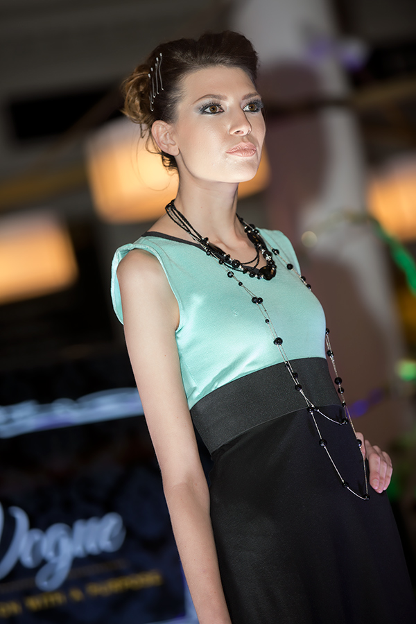 Goodwill En Vogue Fashion Show - 039.jpg