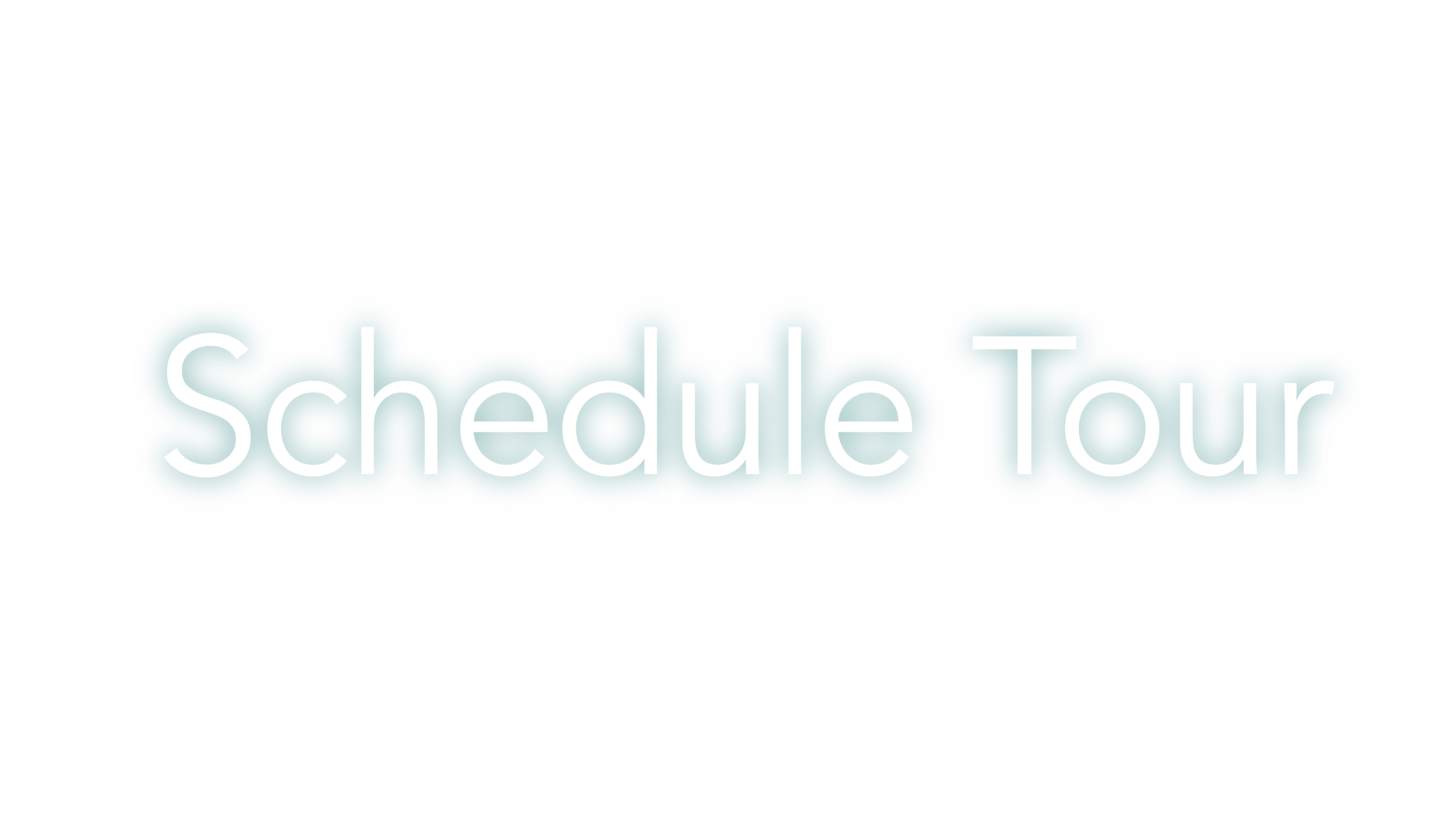 Schedule Tour-01.png