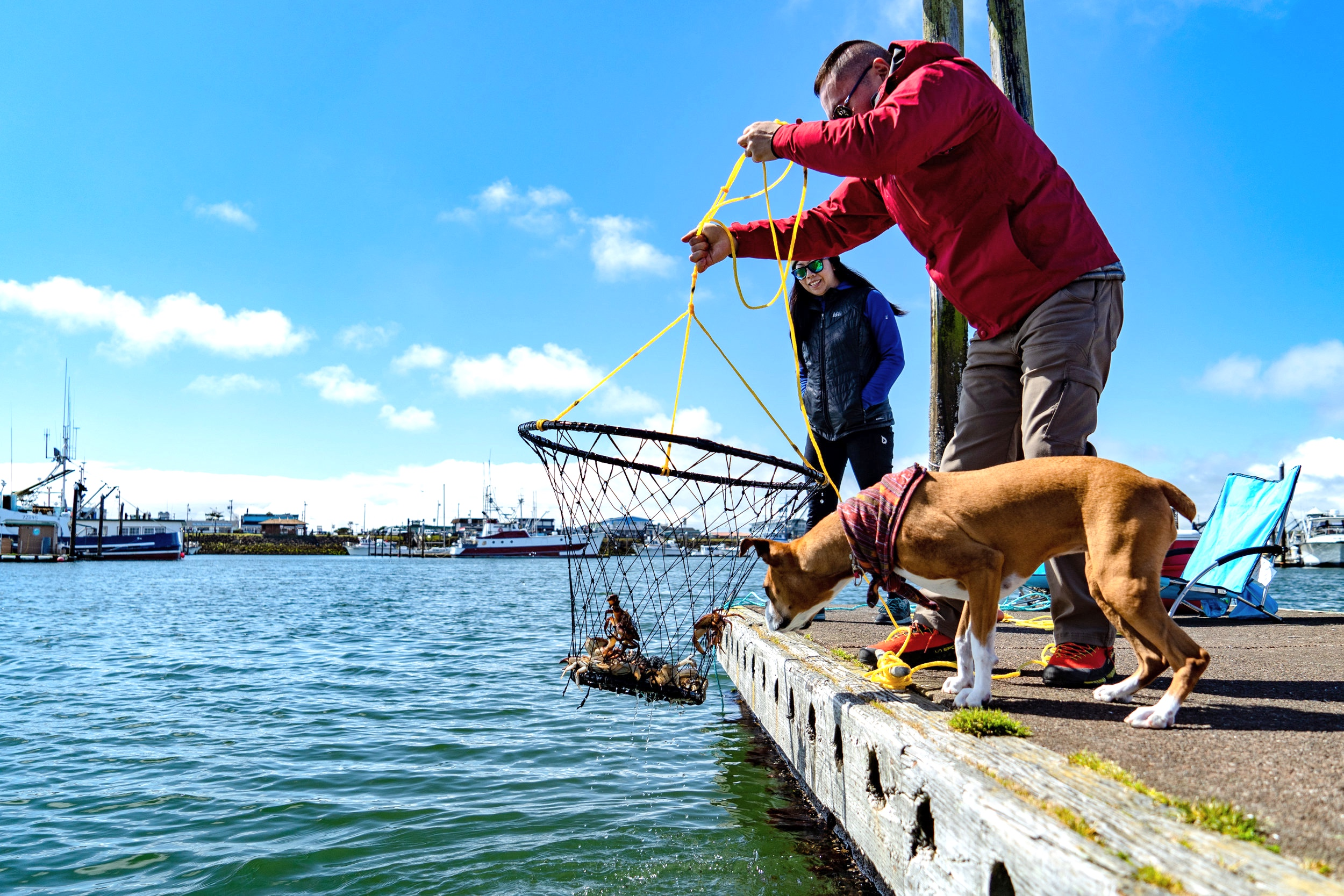Crabbing - The ultimate Westport Marina experience! Learn more HERE!
