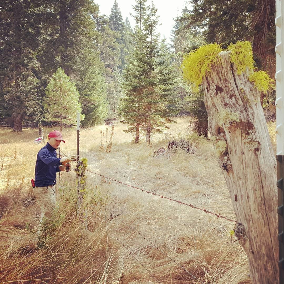 Fence-mending-cattle-full-circle