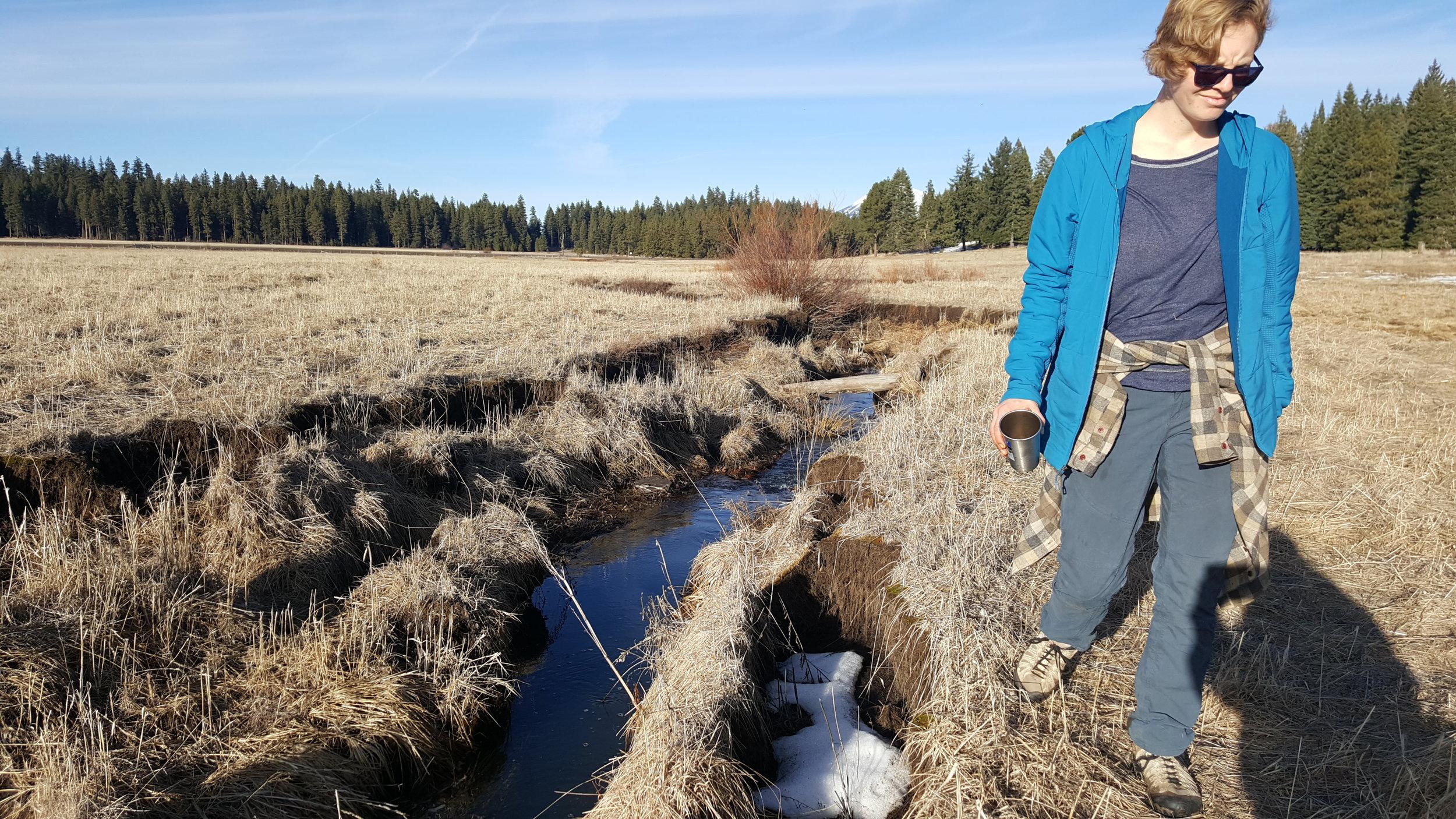 Tuula-community-science-vesper-meadow