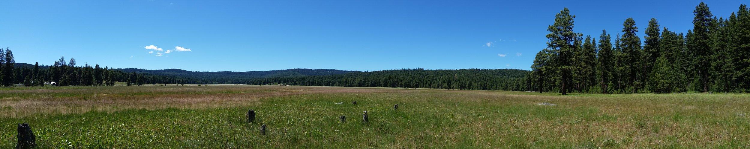Vesper-Meadow-visit-nature-trail-hike-workshops
