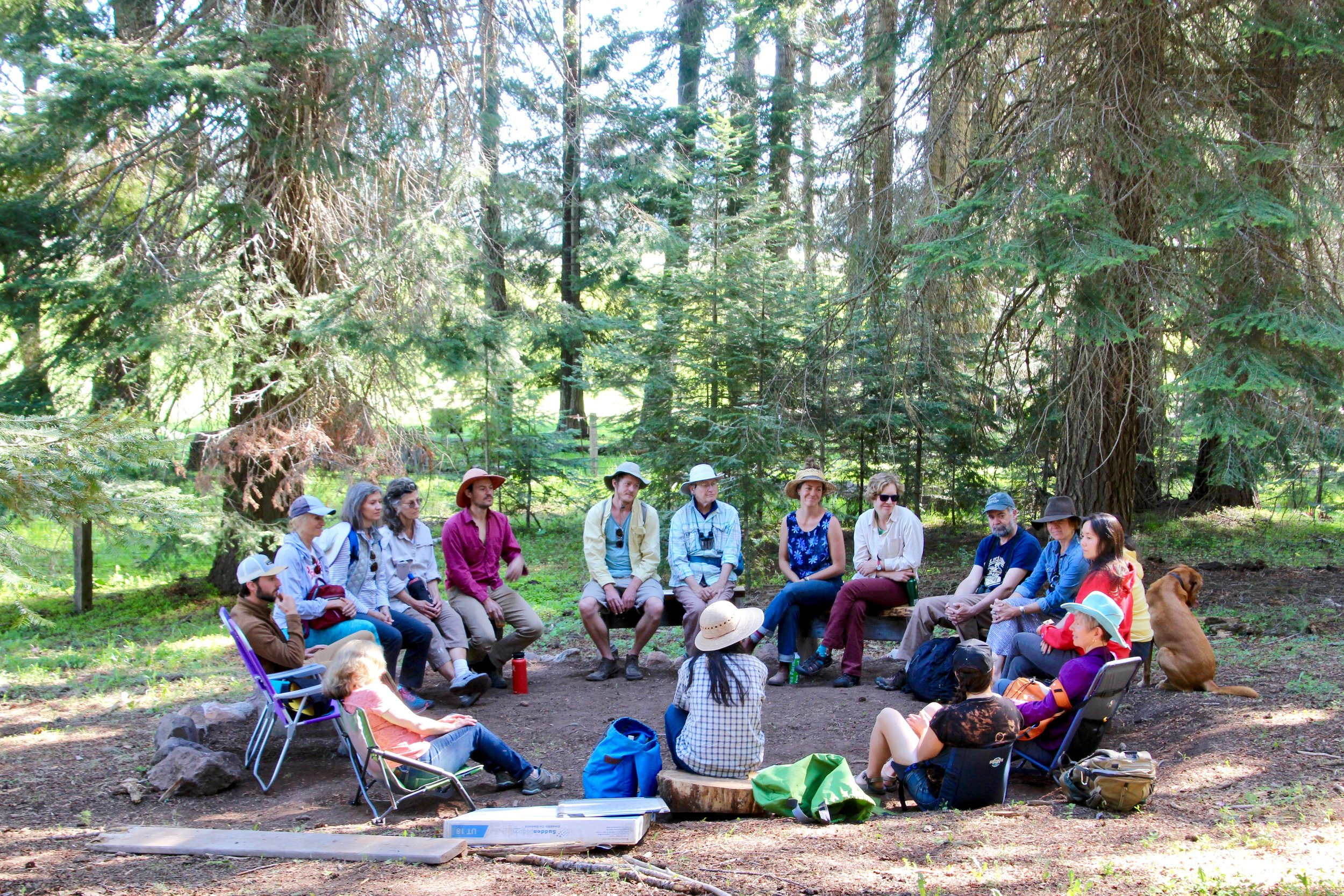 The first forest discussion circle. A dozen artists' prepared for students' arrival by sharing about their experiences of artistic inspiration and mentors.