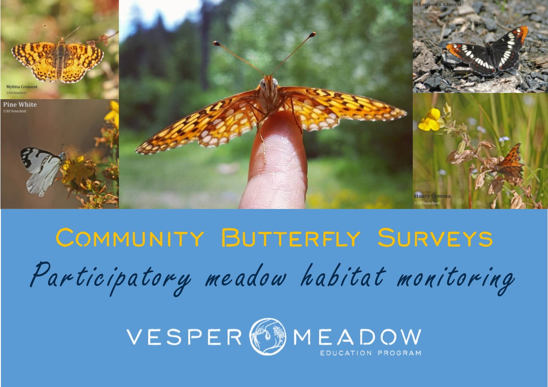 Butterfly-monitoring.jpg