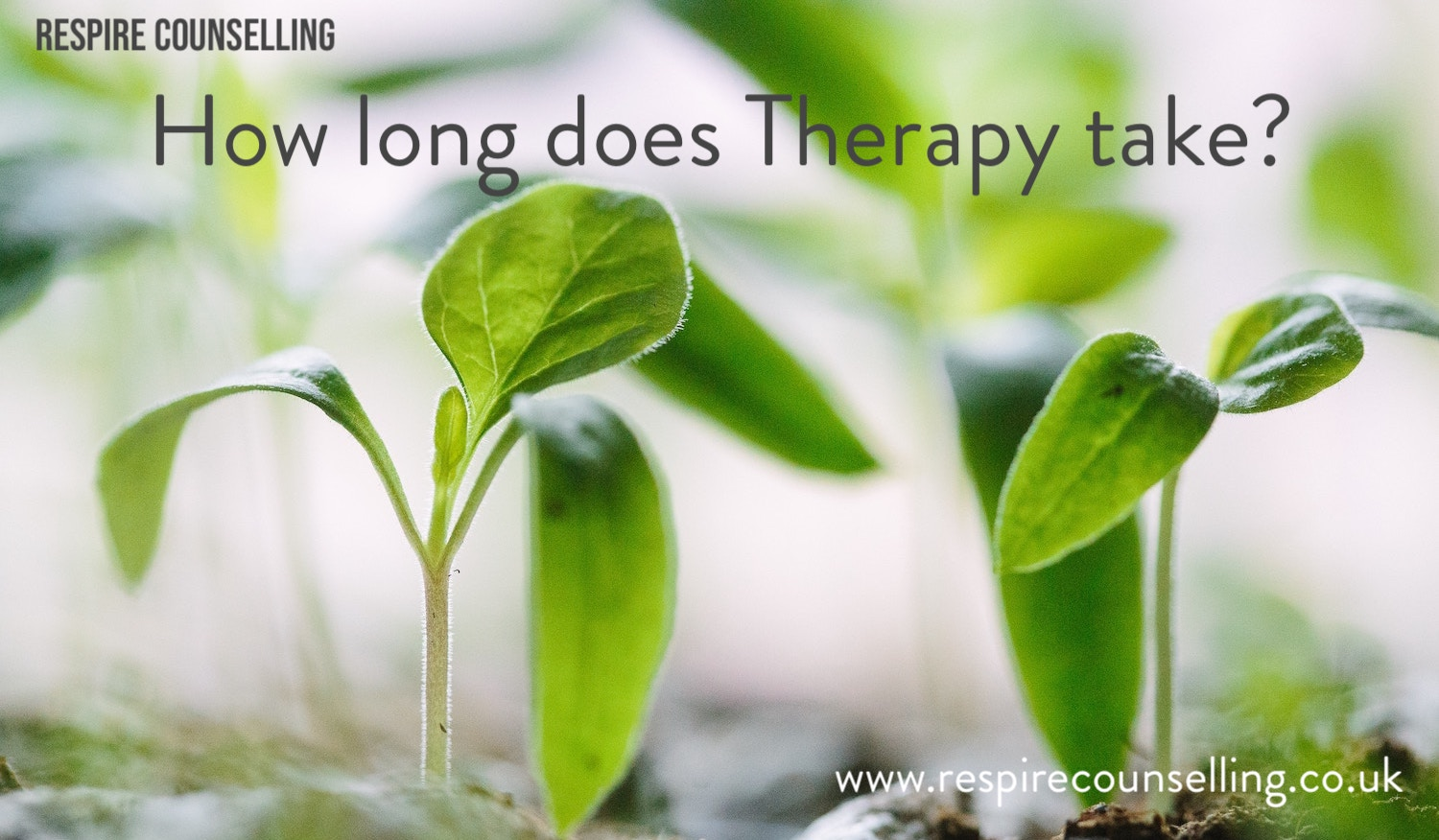 How long does therapy take?.jpg