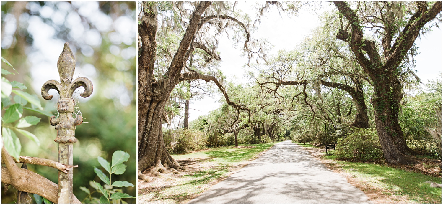 Magnolia Gardens Wedding, Charleston, SC_Erin L. Taylor Photography_0022.jpg