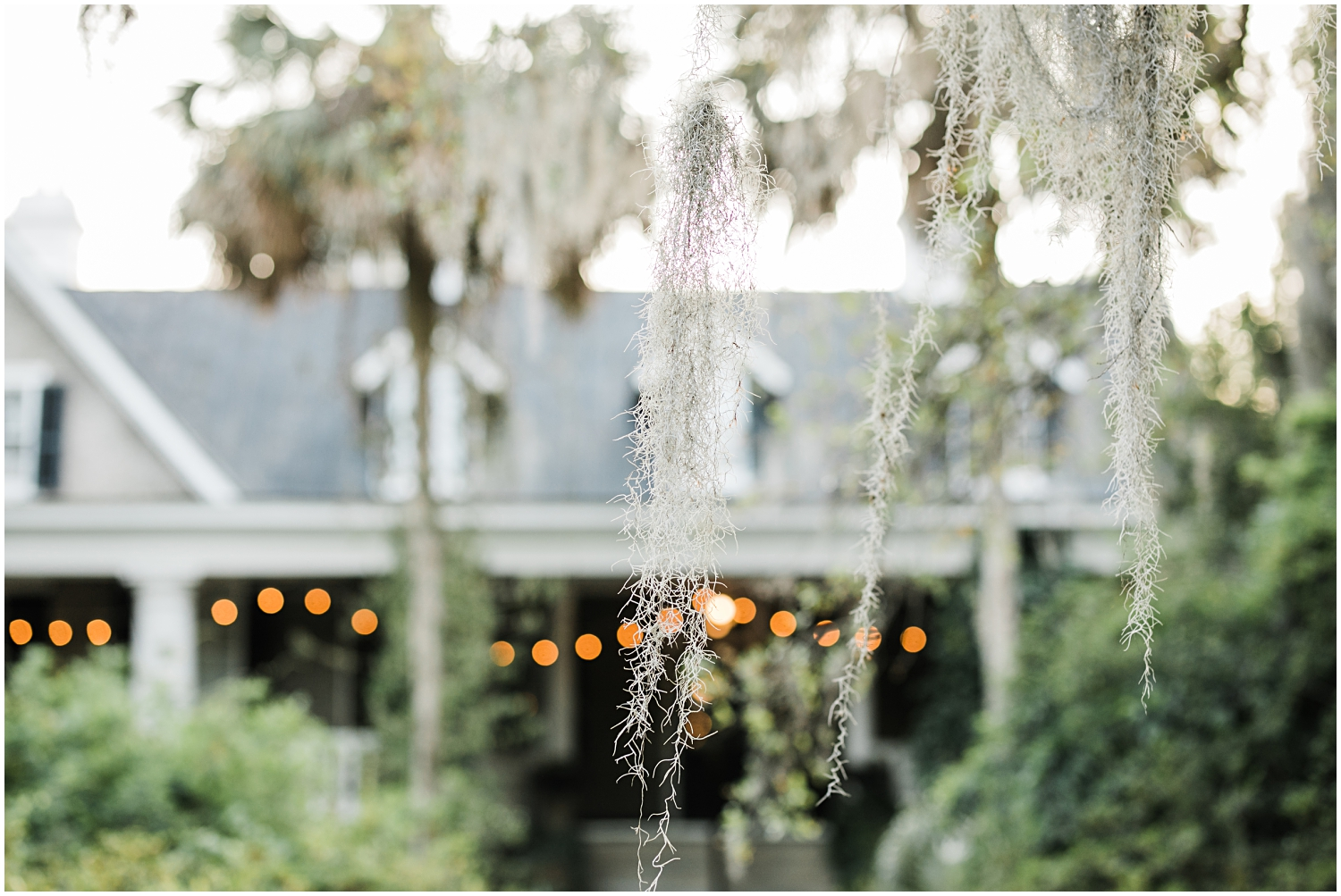 Magnolia Gardens Wedding, Charleston, SC_Erin L. Taylor Photography_0064.jpg