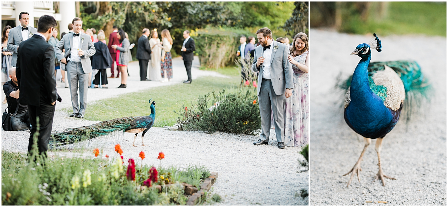 Magnolia Gardens Wedding, Charleston, SC_Erin L. Taylor Photography_0066.jpg