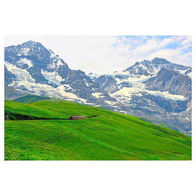 @jungfraujochtopofeurope cogwheel train makes its way back to Kleine Scheidegg. . . . . . . . . . . . #jungfrau #swissalps #switzerland #trains #mountains #nature #topofeurope