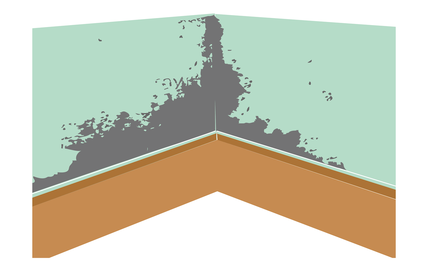 Mold Damage Graphic.png