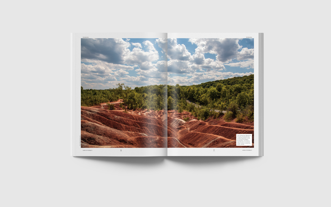 Photography of Ontario's Greenbelt, home of the Badlands in Caledon.