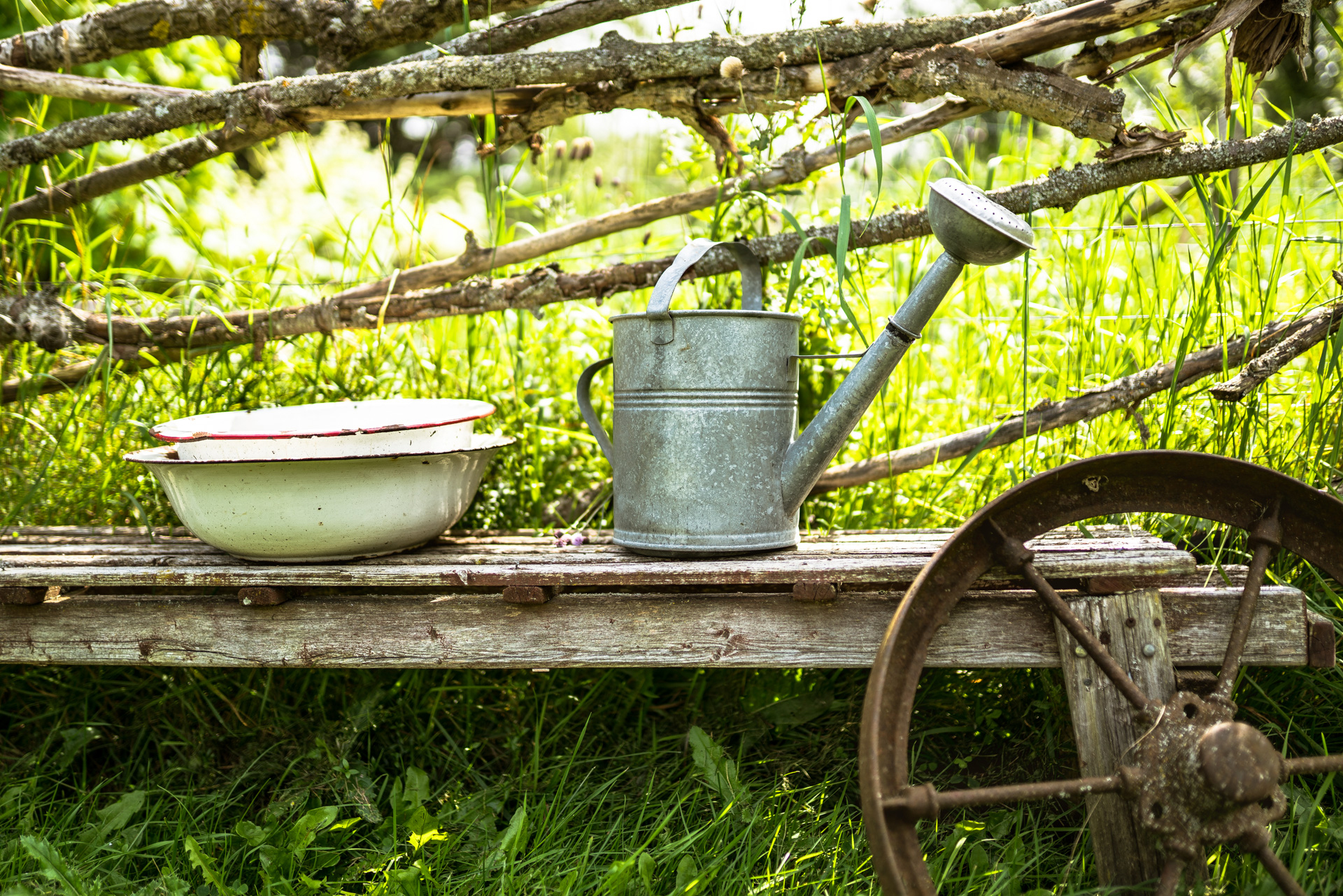 Promotional image of an Ontario farm with pots, pans and a watering can.