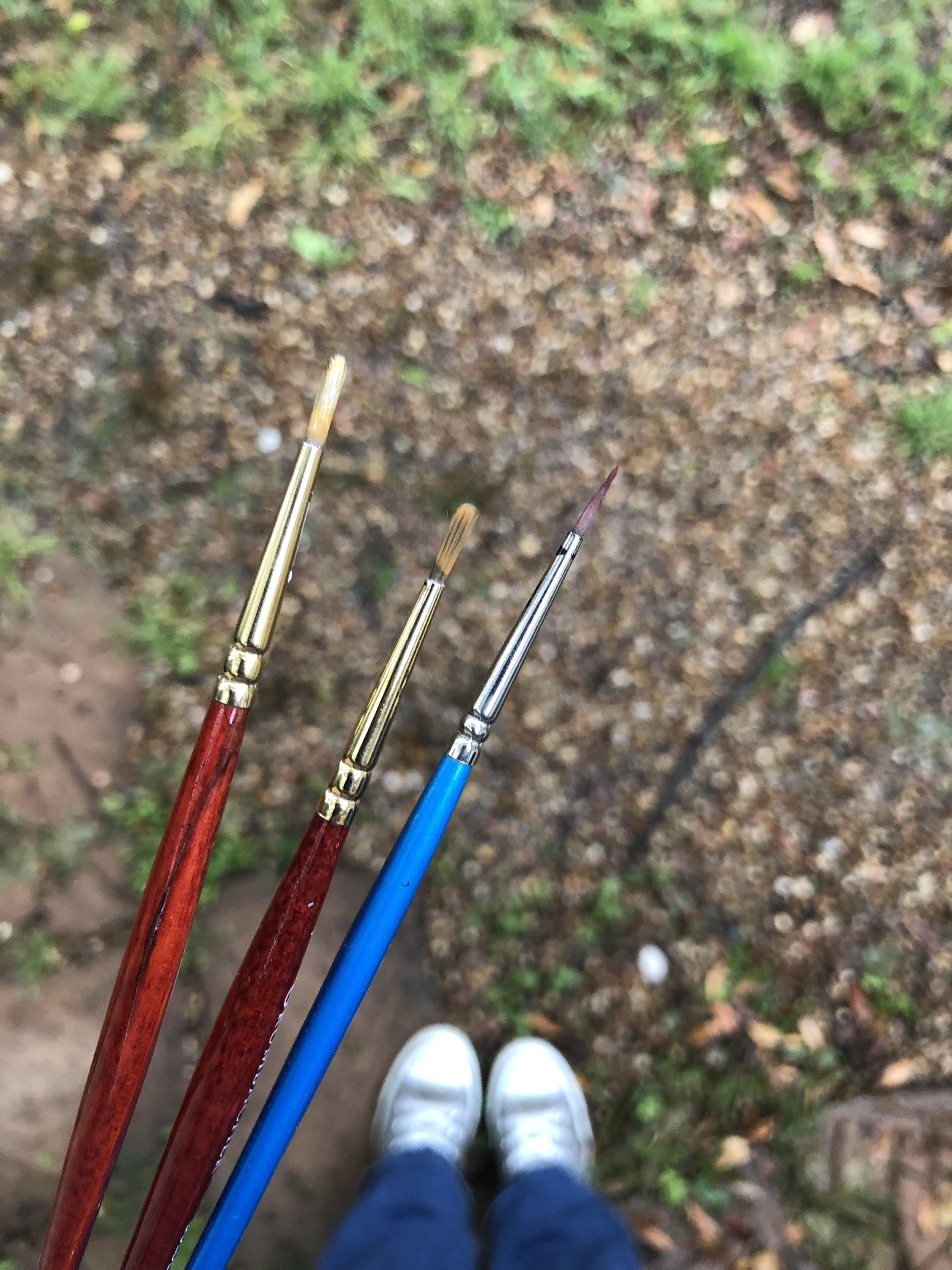 These are all round watercolor brushes that I've purchased at Michaels Arts & Crafts.