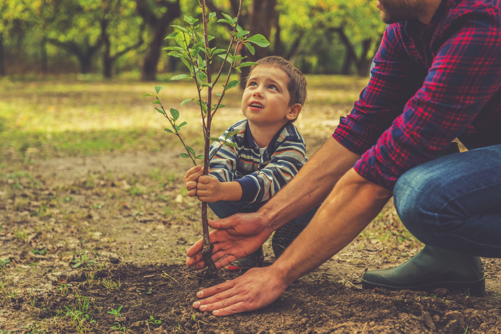 Child and Growing Tree.jpg