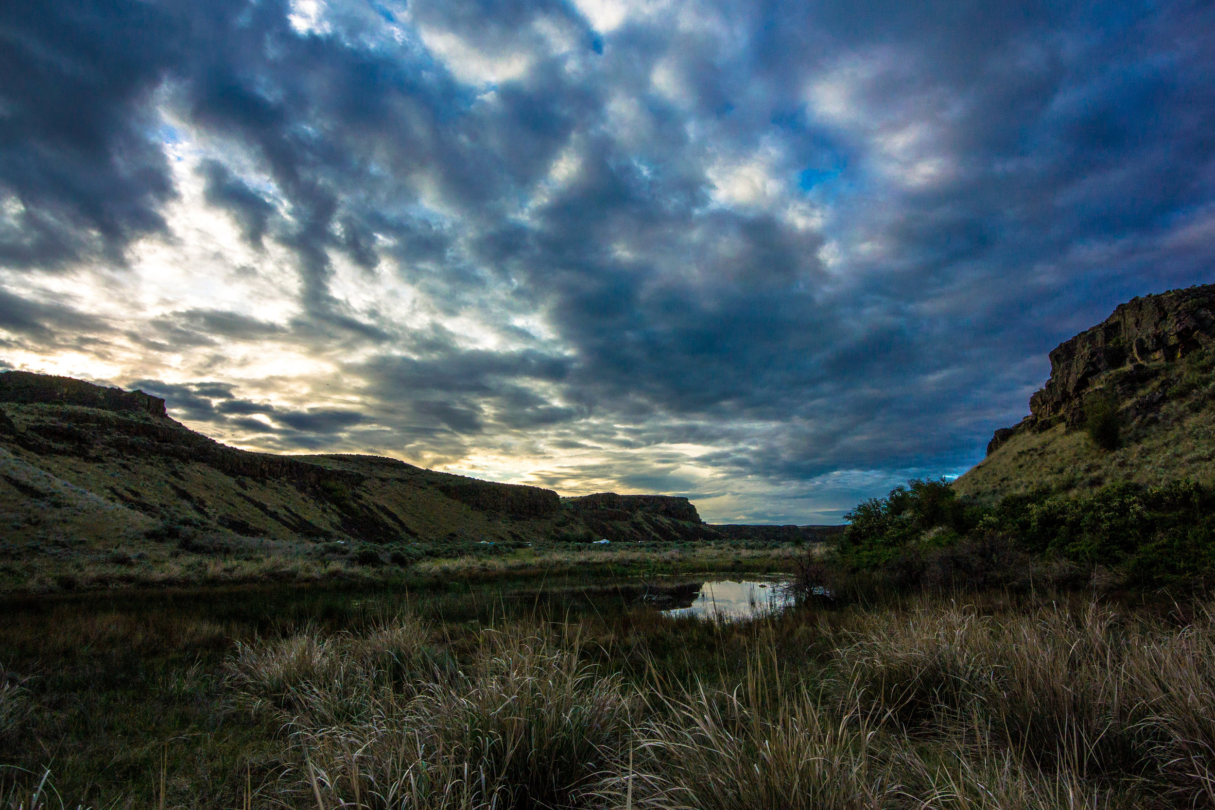 2018 - Evening in the Coulee