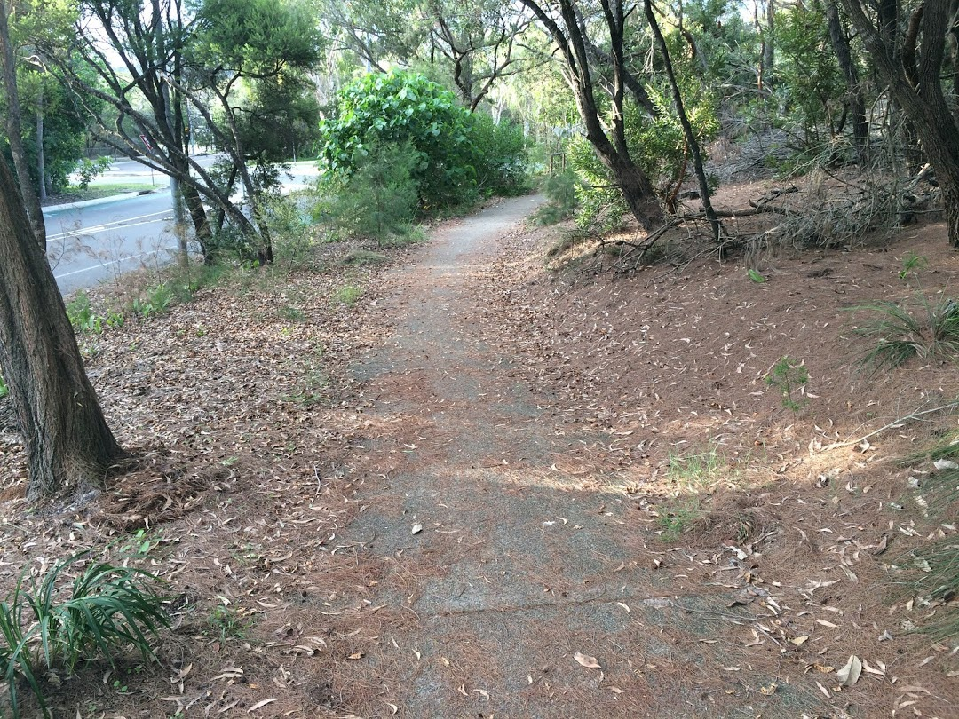 Section of Ben Lexcen drive showing excess leaf litter and debris, possible rider hazard