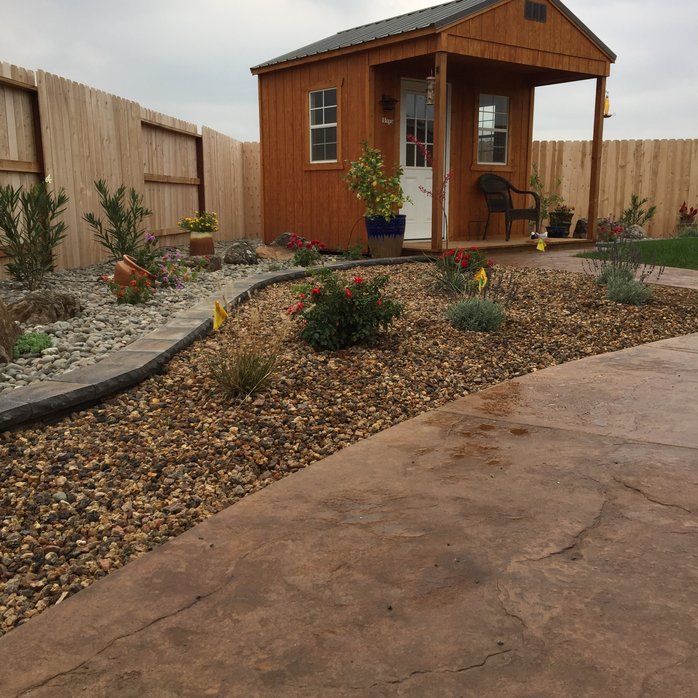 Low maintenance & drought tolerant - custom borders, concrete, and privacy screens.