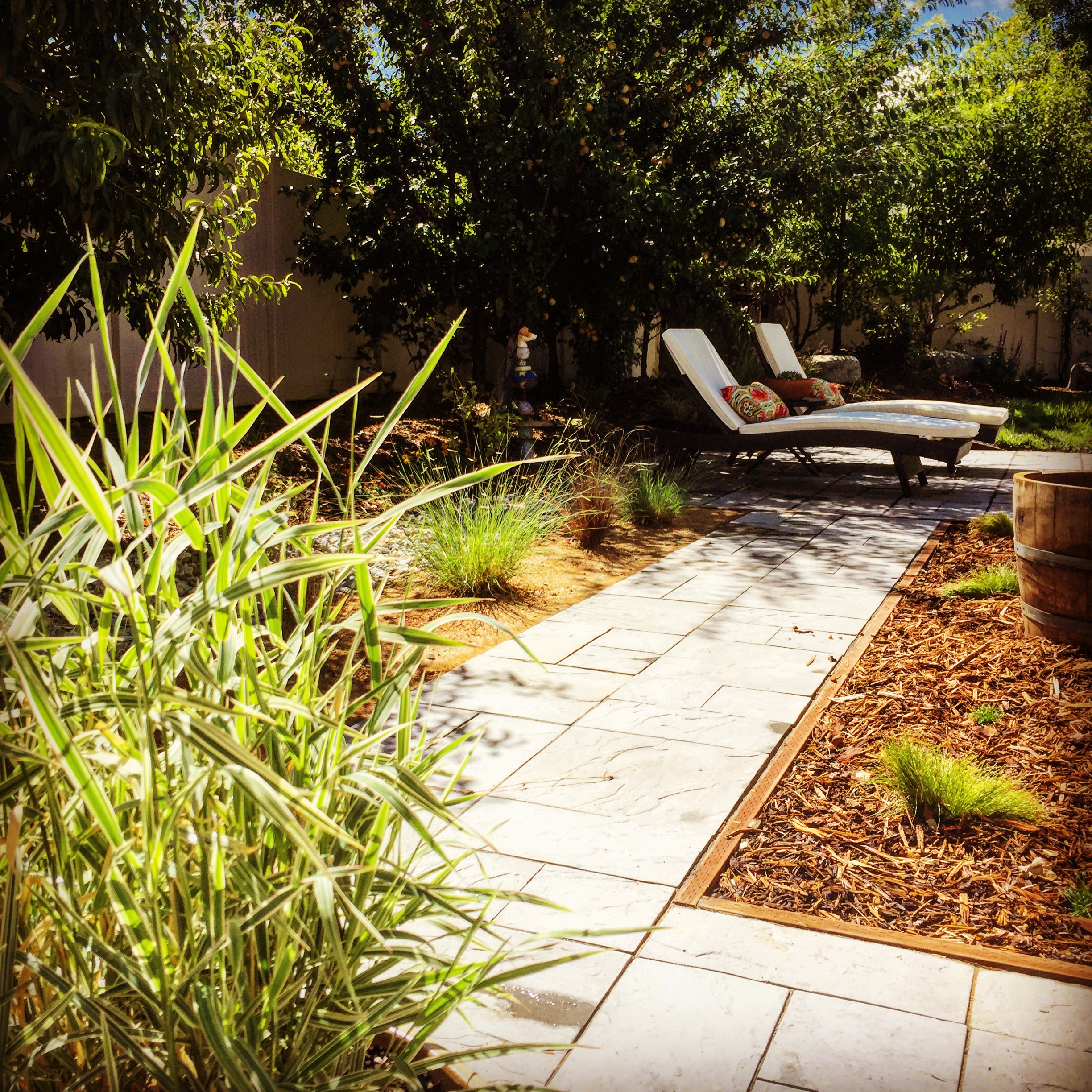 Custom blue stone hardscape patio, drought tolerant plants, custom borders, variety of textures and color.