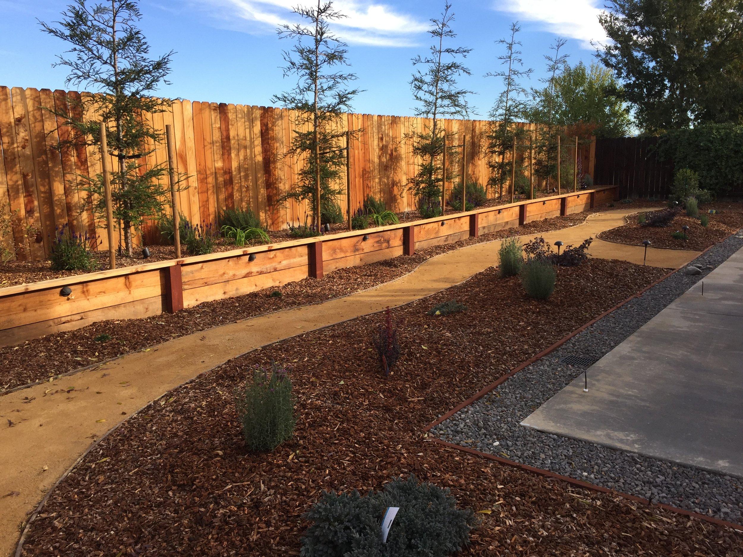 Custom backyard installation.