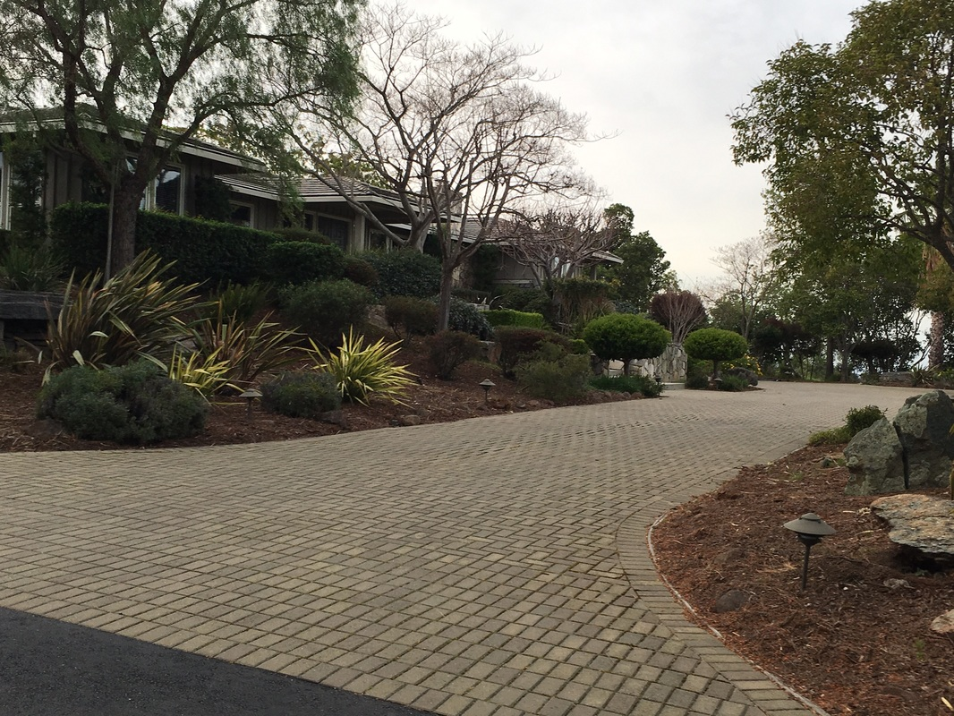 Landscaping services in Reno, NV for driveways
