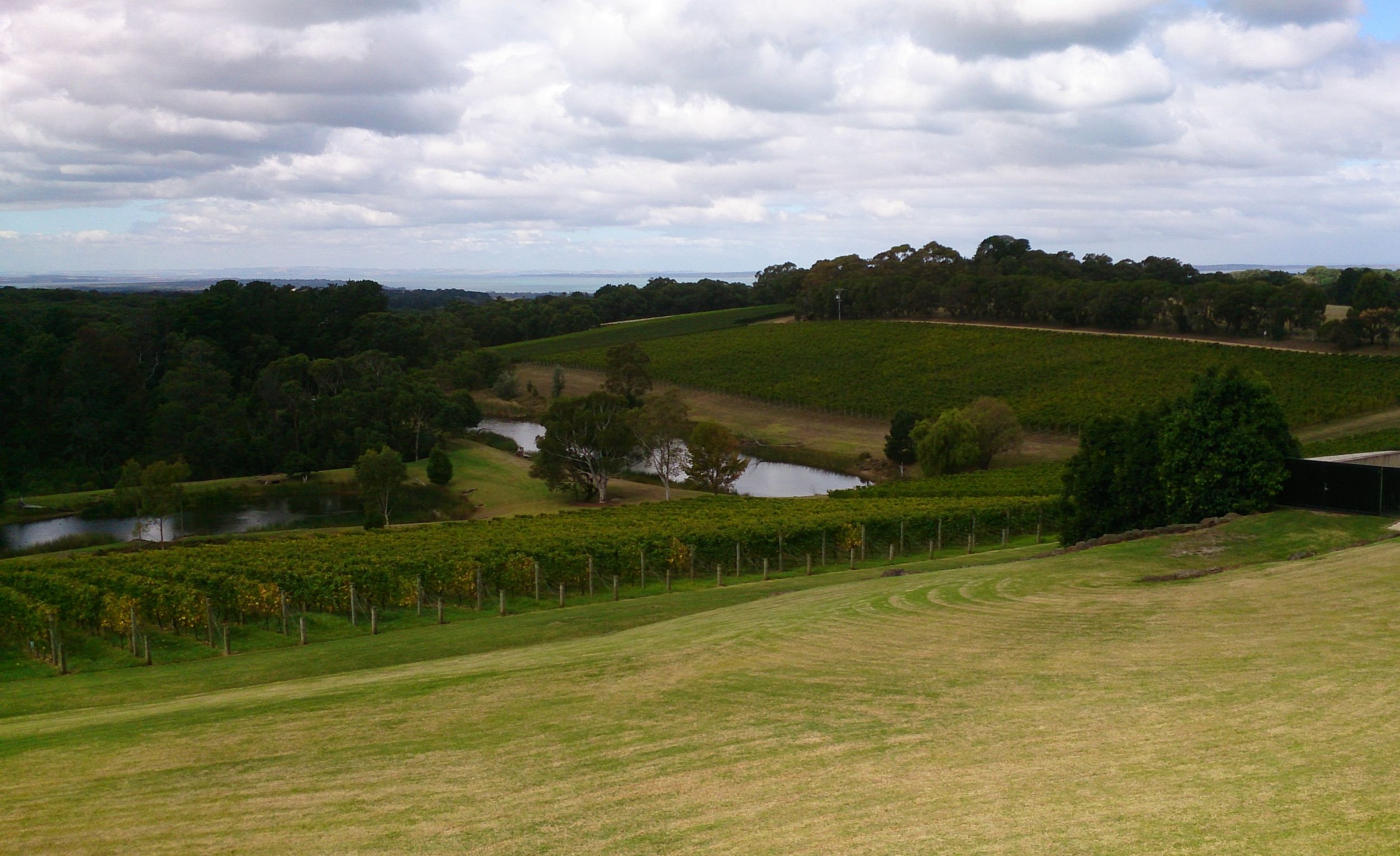 Port Phillip Estate, Red Hill South