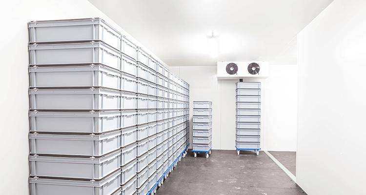 Cold Storage -