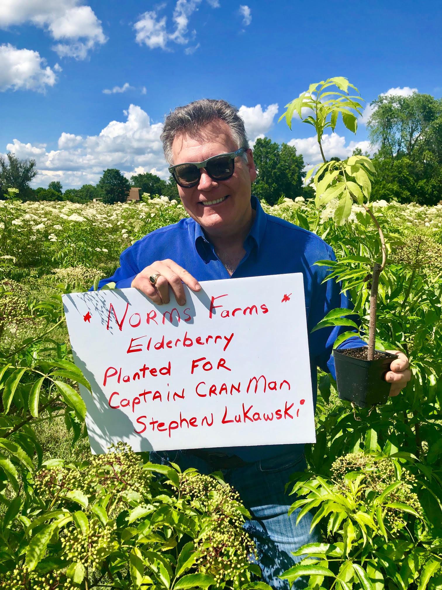 Plant-Elderberry-Captain-CranMan-Stephen-Lukawski.jpg