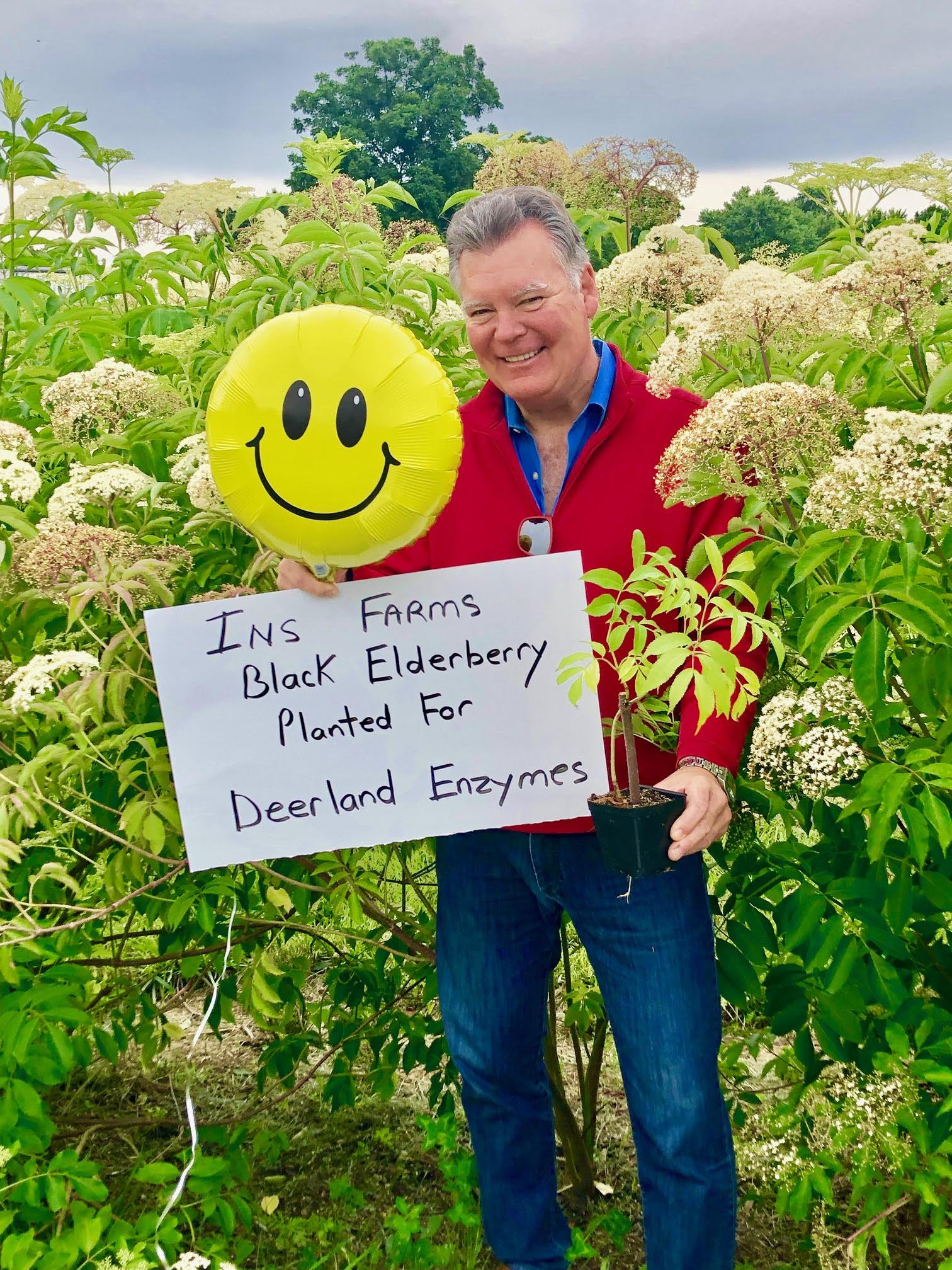 Plant-Elderberry-Deerland-Enzymes.jpg