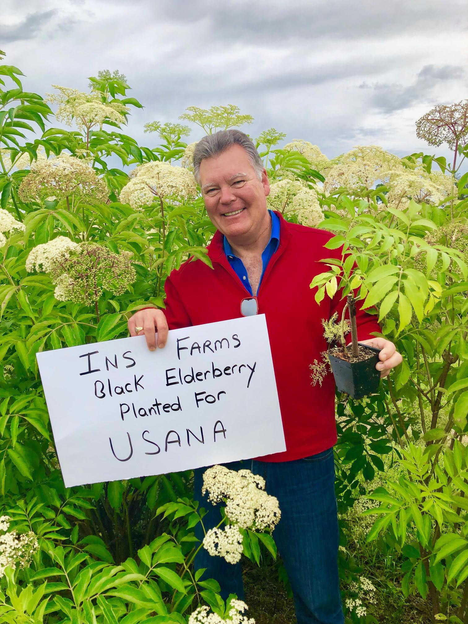 Plant-Elderberry-Usana.jpg