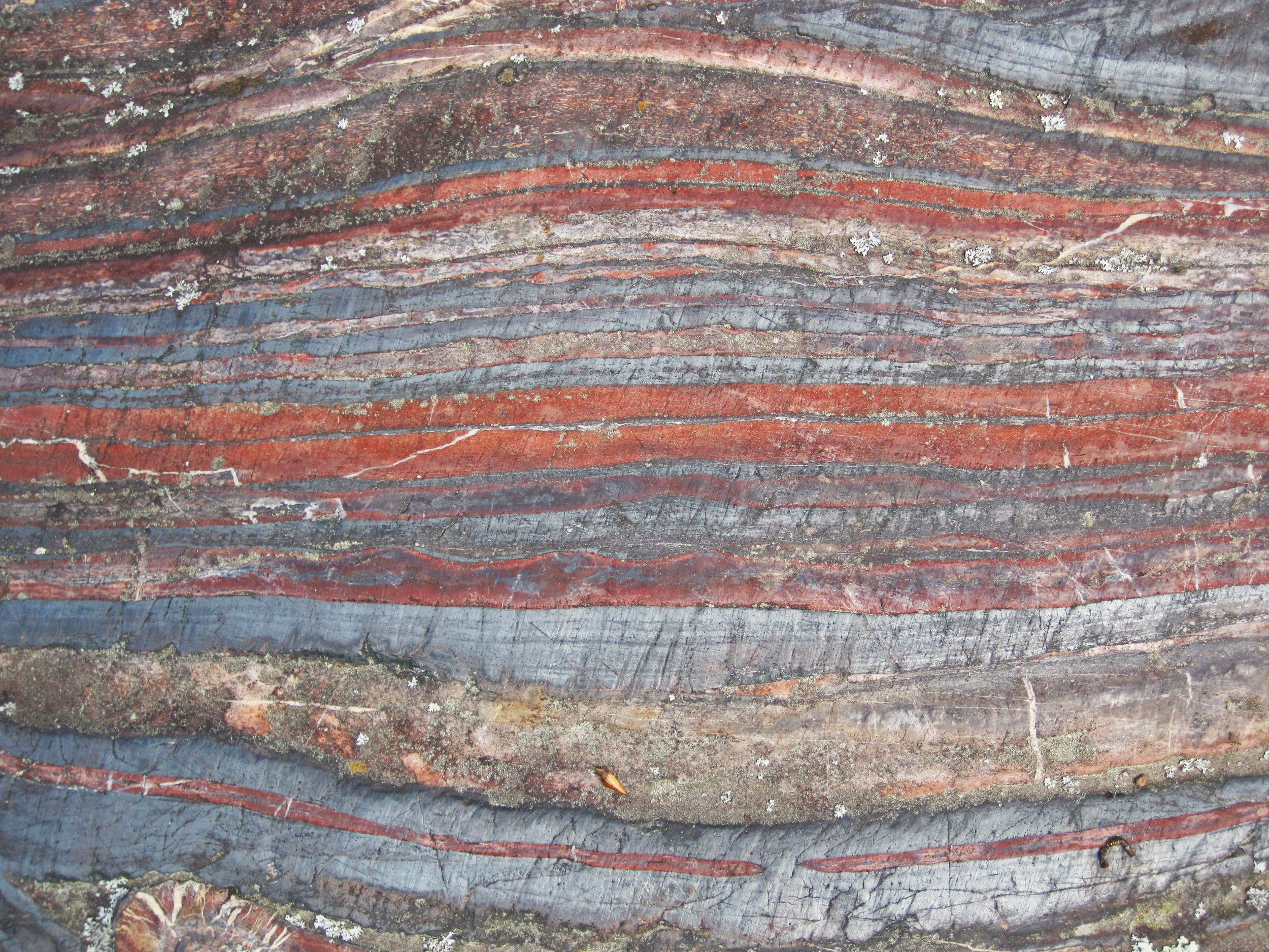 Banded Iron Formation. The whole story of life is in its layers.  Image: Wikimedia Commons