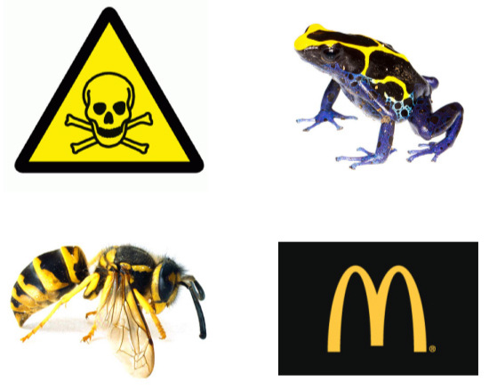 Yellow-and-black is a common warning of toxic hazard. That's you in the top-right.