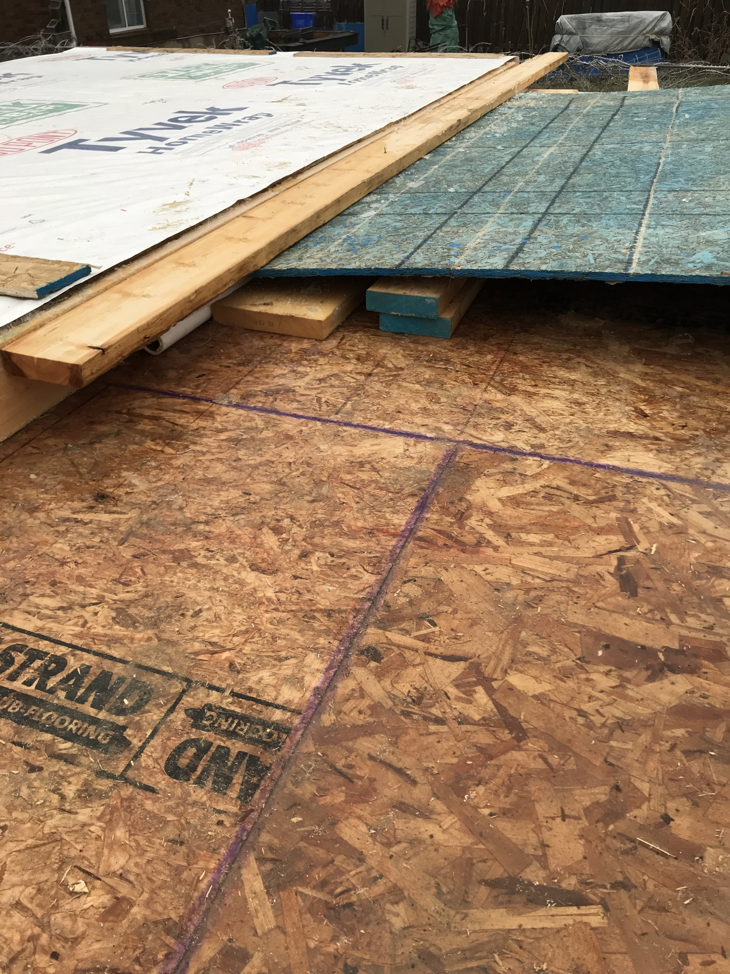 The tapered and wax sealed edges of of these OSB boards (the purple line) ensures the subfloor can be wet and rained/snowed on